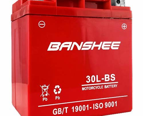 Banshee YTX30L-BS 12V 30AH Battery BMW R90/6, R9OS '69-'76 400CCA 4 YR Warranty